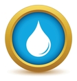 Gold drop icon vector image