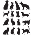 Silhouettes cats and dogs vector image