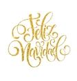 Feliz Navidad hand lettering decoration text for vector image