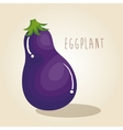 eggplant fresh vegetable icon vector image