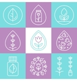 Essential Oils Outline Icons or Logos vector image vector image