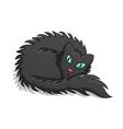 Black Fluffy Cat vector image