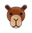 cute head camel cartoon animal icon vector image