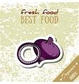 Healthy Food Onion vector image