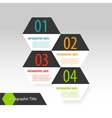 Hexagon modern infographics options banner vector image