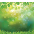 background spring vector image