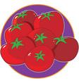 tomato graphic vector image vector image