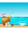 Coconut coctail vector image
