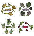 color vegetables set vector image