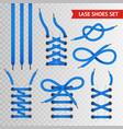 blue lace shoes icon set vector image