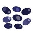 Black olives isolated on white backround vector image