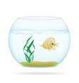 aquarium with fish 03 vector image vector image