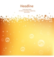 background Beer in the high magnification vector image