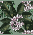 seamless pattern with plumeria flowers and vector image