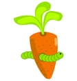 The caterpillar in the carrot vector image
