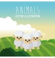 sheep icon design  graphic  animal vector image
