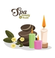 spa beauty and health hot stones scented candles vector image