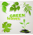 set sticker green leaves vector image