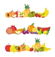 Fruits banner set and berries horizontal poster vector image