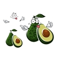 Avocado fruit character and seed with cut vector image vector image