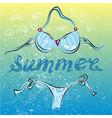 bikini swimming suit on summer beach vector image