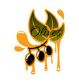 olive oil drips and black olives icon vector image