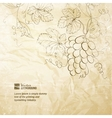 Brown wrinkled paper with grapes vector image