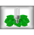 Energy saving bulb and green leaves vector image