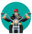 biker wearing leather clothes with grey long beard vector image