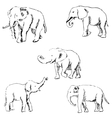 Elephants A sketch by hand Pencil drawing vector image