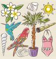 set of summer symbols swim suit parrot vector image