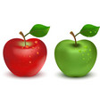 Red apple and green apple vector image