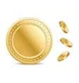Empty surface of the golden finance isolated coin vector image