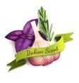 Garlic ribbon badge vector image