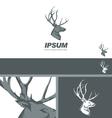 Deer Stag Head sign drawn vintage branding design vector image vector image