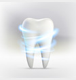 whitening of human tooth vector image