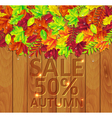 autumn leaves on a wooden background vector image