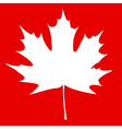 Maple Leaf White vector image vector image