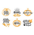 thanksgiving lettering with sketches for vector image