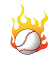 2008641 baseball vector image vector image