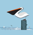 pelican on sky background vector image