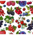 Sketched berries like blueberry raspberry vector image