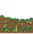 watermelon fruit cartoon vector image