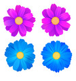 set of isolated buds of flowers blue and purple vector image