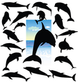 dolphin black silhouettes vector image