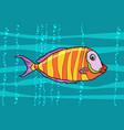 cichlid aquarium fish vector image