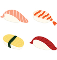Salmon Shrimp Sweet omlette Tuna Sushi vector image