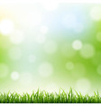 Grass Border With Bokeh Background vector image vector image