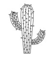 Monochrome silhouette of cactus with two branches vector image