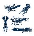 squid sea animal icon set for seafood design vector image vector image